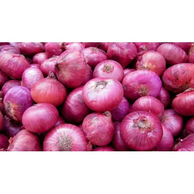 Onion (500 Gms)